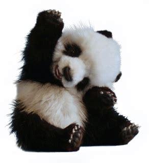 Kaos Sleeve Panda tic shop kaos lengan panjang