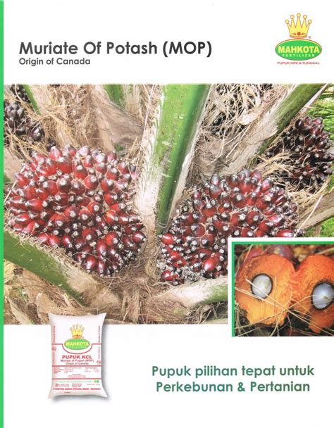 Jual Pupuk K Bioboost Di Medan 1 npk mahkota kios pupuk distributor pupuk jual pupuk