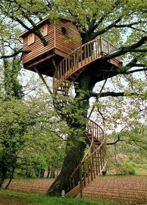cool tree house 10 unusual but interesting tree houses home design