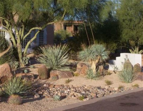 Desert Landscape Yard Pictures Desert Landscaping Pictures And Ideas