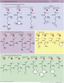 Bond Length Table Tag Molecular Bibsonomy