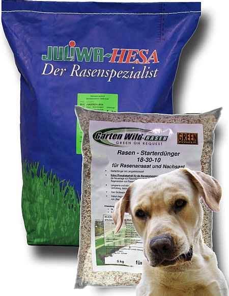 Welcher Rasensamen Ist Der Beste 2244 by Hunderasen Der Beste Rasen F 252 R Hunde