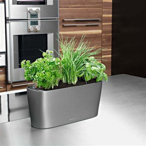 indoor window sill planter self watering planter indoor herbs and self watering on