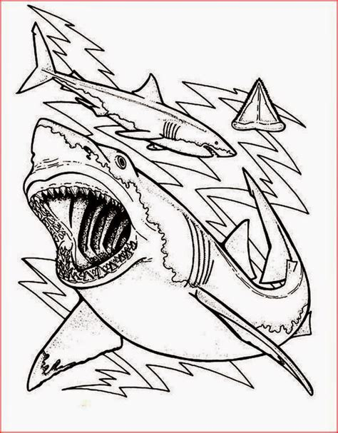 megalodon coloring sheet coloring pages
