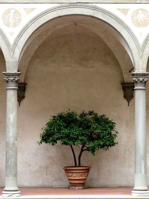 305 best mediterranean and spanish revival style images on 305 best images about mediterranean and spanish revival