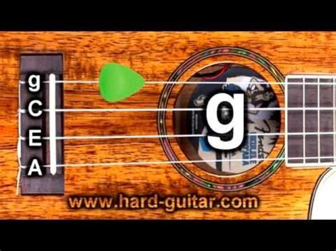 How To From Tuner by Best Ukulele Tuner Standard Tuning G C E A