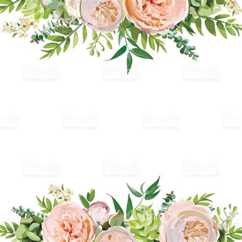 Vector Floral Design Square Card Design Soft Pink Peach English Garden Rose Eucalyptus Green