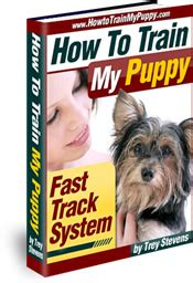 how to house a puppy fast how to house my puppy fast track system