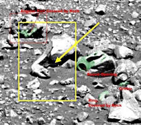 strange anomalies on earth mars anomalies http i2 wp com www dailybrainfreeze com