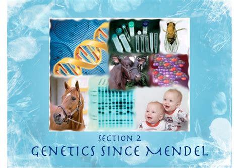 Section 2 Mendelian Genetics by Genetics Since Mendel 5 2
