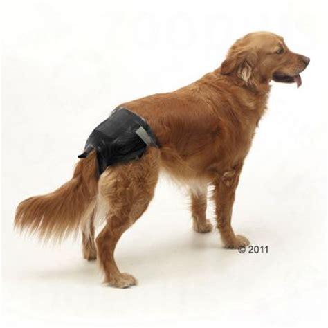 comfort dog training savic comfort dog nappies free p p 163 29 at zooplus