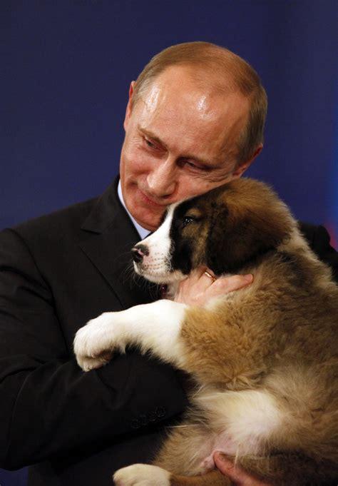 putin puppy happy birthday mr president vladimir putin s most presents sputnik