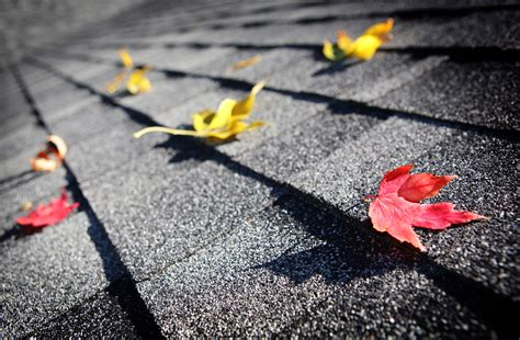 an average warranty of roof will put on a roof want to install a composition roof read this