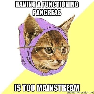 Diabetes Cat Meme - diabetus shit on pinterest