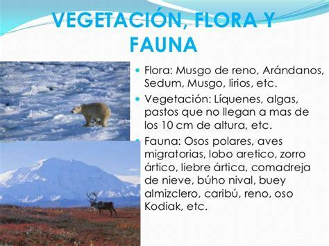 las cadenas migratorias definicion biomas tundra 6to 2012