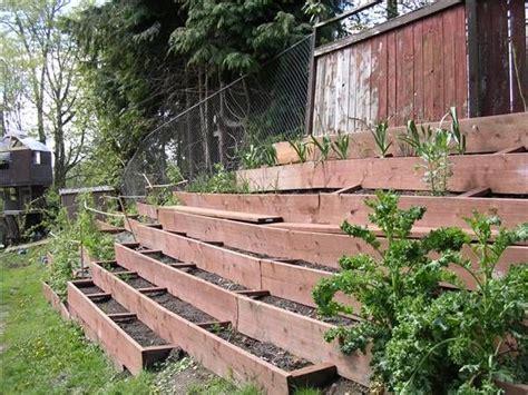 hillside garden terraced gardening divaqs s blog gardening community raised bed gardens