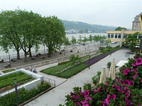 hotel haus morjan koblenz chambre picture of hotel haus morjan koblenz tripadvisor