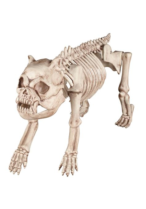 bone treats bones the hungry hound skeleton