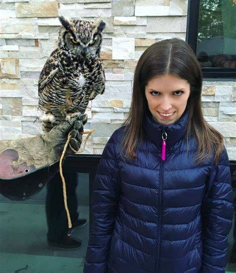 anna kendrick dead anna kendrick reddit goes of on photoshops of her with owl