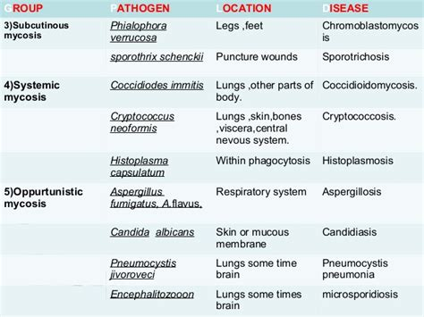 names of fungal diseases in plants fungal diseases in humans and animals