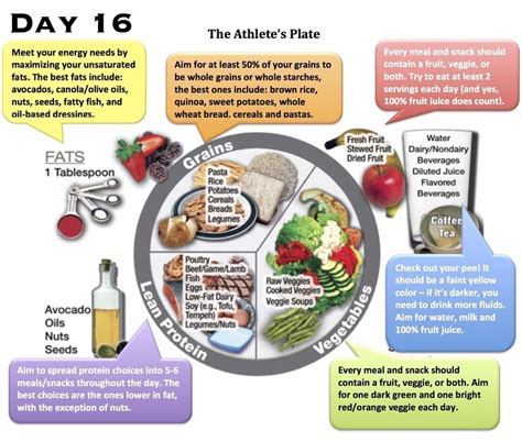 healthy fats with each meal a look inside an eleat athlete s diet eleat sports