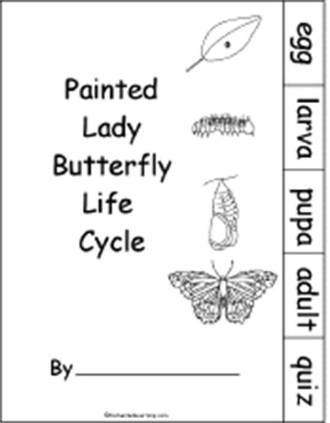 butterfly stages coloring pages image gallery human life cycle activities
