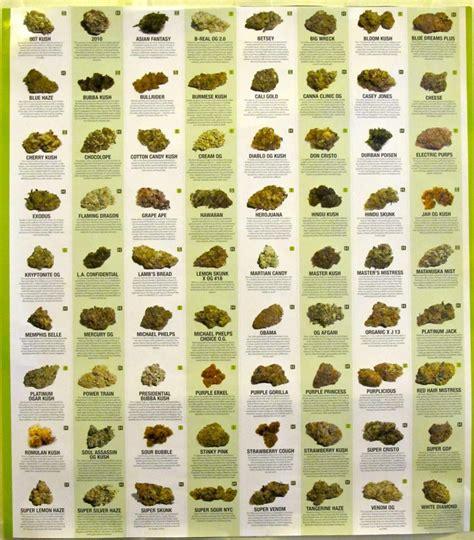 best strain the 50 best strains honest marijuana