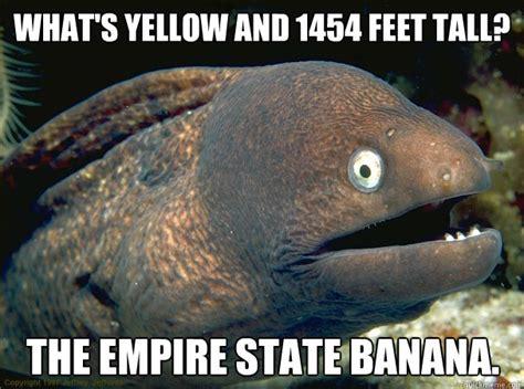 Bad Joke Eel Meme - bad joke eel memes quickmeme