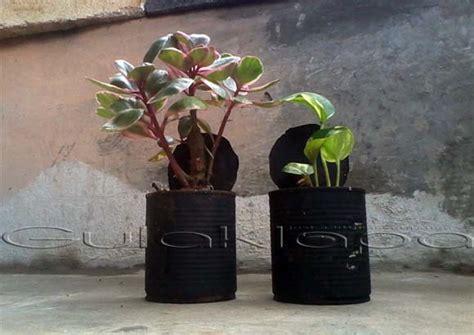 Pot Flowers Kaleng membuat pot bunga sederhana dari kaleng bekas gulaklapa