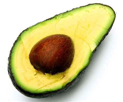 dogs eat avocado are bananas for dogs 33 foods dogs can can t eat