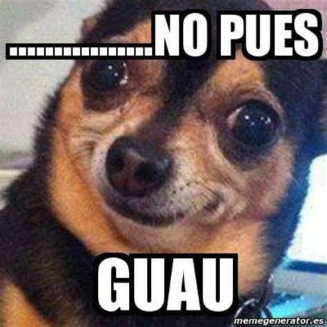 Meme Risa - memes para whatsapp de risa frases de whatsapp de risa