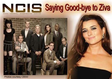 why did lauren holly leave ncis why did cote de pablo leave ncis myideasbedroom com