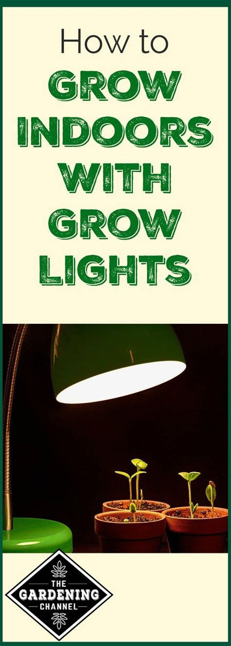 how to use grow lights growing indoors with grow lights grow lights flourish