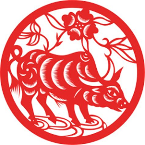 new year ox horoscope 2016 the year of the ox tarot prophet