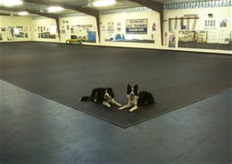 Rubber Flooring For Daycare by Kennel And Daycare Rubber Flooring