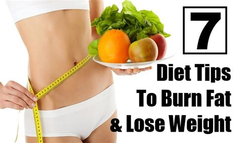 Ultrashape Lose Weight Burn Without A Diet by Burn Weight Loss Plan Indexer Toning Exercises