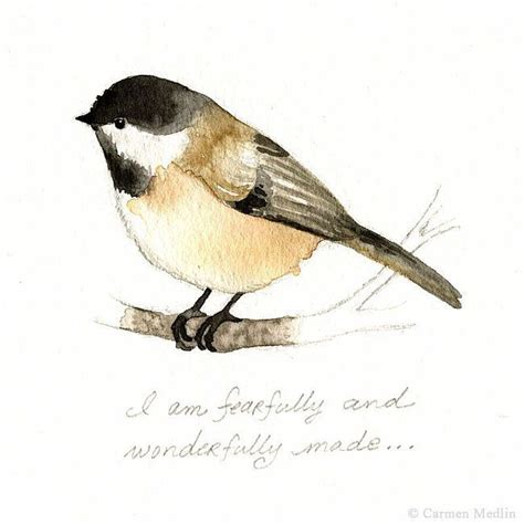 watercolor tutorial chickadee 37 best images about watercolor birds tutorials on