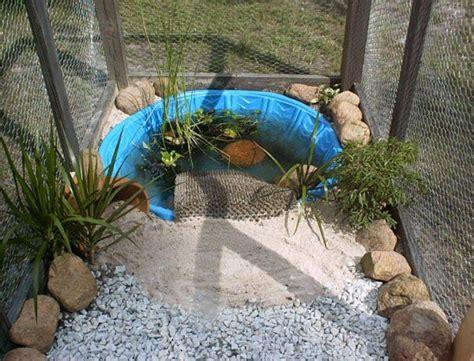 backyard turtle habitat 25 best ideas about turtle pond on pinterest fish ponds diy pond and outdoor ponds