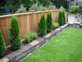 backyard fencing privacy fence fence sod irrigation system stone work plants luxurious