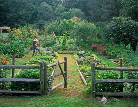 vegetable garden definition raised bed vegetable gardens the stuff guide