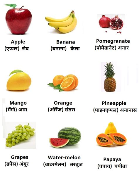 6 fruits name fruits names in www pixshark images