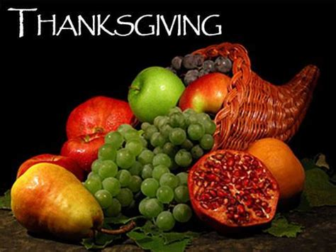 thanksgiving backgrounds imagevine