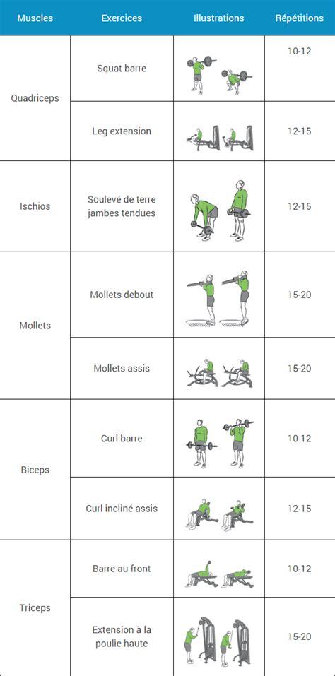 Programme Musculation Banc programme musculation d 233 butant espace musculation