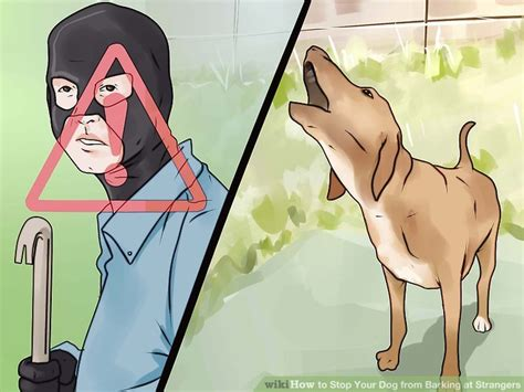 stop barking at how to stop your from barking at strangers 11 steps