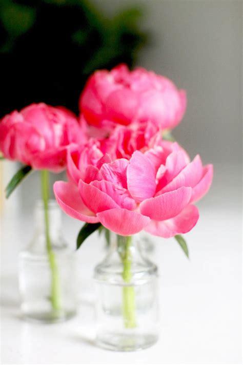 diy flower arrangement peonies 3 ways diy flower arrangement peonies 3 ways style me pretty