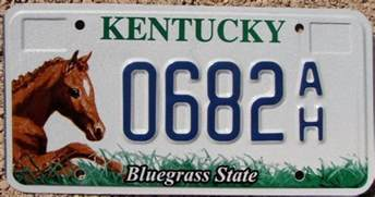 kentucky graphic license plate ky bluegrass state
