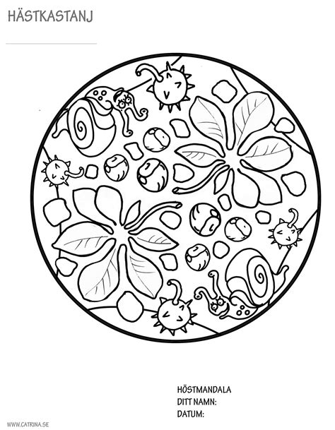 autumn mandala coloring pages autumn mandala s 246 k p 229 google work pinterest mandala