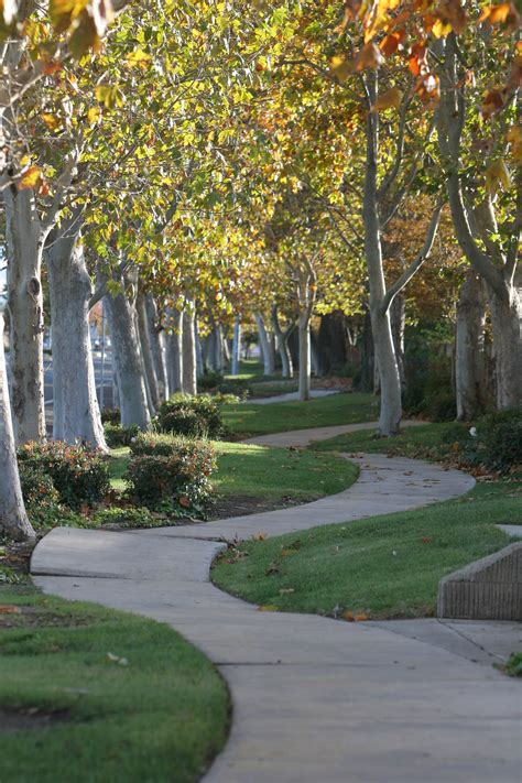 Landscaper Tracy Ca City Of Tracy Departments Management Works
