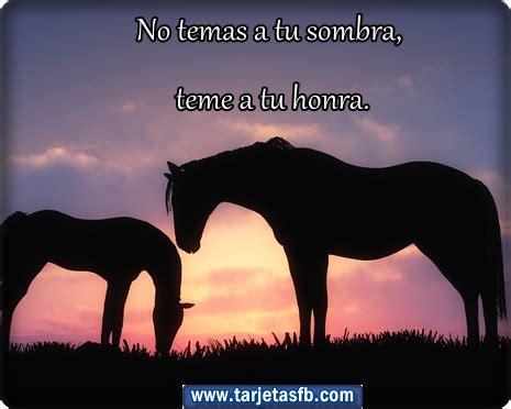 imagenes romanticas con caballos im 225 genes de caballos con frases de amor imagenes de amor