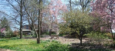 Botanical Gardens Cincinnati Hauck Botanical Gardens Cincinnati Parks